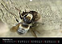 Delightful Bees (Wall Calendar 2019 DIN A3 Landscape) - Produktdetailbild 9