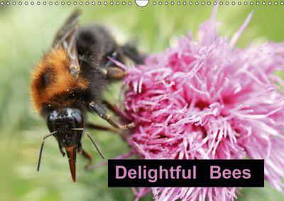 Delightful Bees (Wall Calendar 2019 DIN A3 Landscape), Rachel Travis