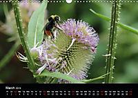 Delightful Bees (Wall Calendar 2019 DIN A3 Landscape) - Produktdetailbild 3
