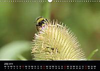 Delightful Bees (Wall Calendar 2019 DIN A3 Landscape) - Produktdetailbild 7