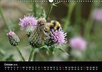 Delightful Bees (Wall Calendar 2019 DIN A3 Landscape) - Produktdetailbild 10