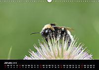 Delightful Bees (Wall Calendar 2019 DIN A3 Landscape) - Produktdetailbild 1