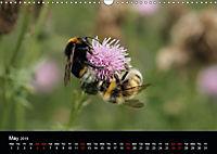 Delightful Bees (Wall Calendar 2019 DIN A3 Landscape) - Produktdetailbild 5