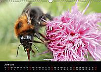 Delightful Bees (Wall Calendar 2019 DIN A3 Landscape) - Produktdetailbild 6