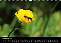 Delightful Bees (Wall Calendar 2019 DIN A3 Landscape) - Produktdetailbild 11