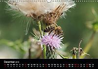 Delightful Bees (Wall Calendar 2019 DIN A3 Landscape) - Produktdetailbild 12