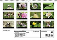 Delightful Bees (Wall Calendar 2019 DIN A3 Landscape) - Produktdetailbild 13