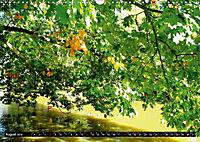 DELMENHORST - Graftanlage im Sonnenlicht (Wandkalender 2019 DIN A3 quer) - Produktdetailbild 8