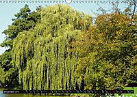 DELMENHORST - Graftanlage im Sonnenlicht (Wandkalender 2019 DIN A3 quer) - Produktdetailbild 12