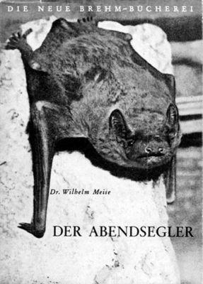 Der Abendsegler, Wilhelm Meise