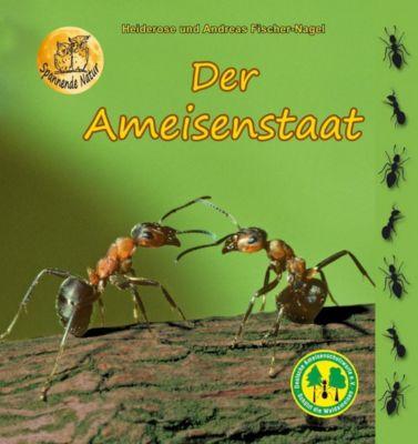 Der Ameisenstaat, Heiderose Fischer-Nagel