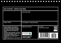 Der Auerhahn - Szenen einer Balz (Tischkalender 2019 DIN A5 quer) - Produktdetailbild 8