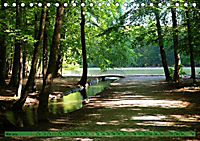 Der Augsburger Stadtwald - Ein Paradies für Naturfreunde (Tischkalender 2019 DIN A5 quer) - Produktdetailbild 5