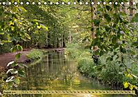 Der Augsburger Stadtwald - Ein Paradies für Naturfreunde (Tischkalender 2019 DIN A5 quer) - Produktdetailbild 8