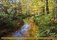 Der Augsburger Stadtwald - Ein Paradies für Naturfreunde (Tischkalender 2019 DIN A5 quer) - Produktdetailbild 11
