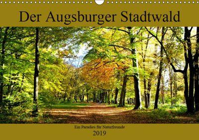 Der Augsburger Stadtwald - Ein Paradies für Naturfreunde (Wandkalender 2019 DIN A3 quer), Monika Lutzenberger