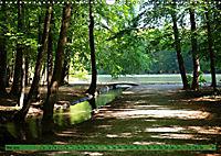 Der Augsburger Stadtwald - Ein Paradies für Naturfreunde (Wandkalender 2019 DIN A3 quer) - Produktdetailbild 5