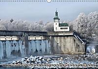 Der Augsburger Stadtwald - Ein Paradies für Naturfreunde (Wandkalender 2019 DIN A3 quer) - Produktdetailbild 1