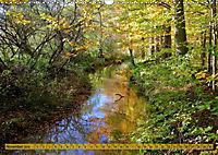 Der Augsburger Stadtwald - Ein Paradies für Naturfreunde (Wandkalender 2019 DIN A3 quer) - Produktdetailbild 11
