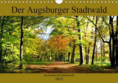 Der Augsburger Stadtwald - Ein Paradies für Naturfreunde (Wandkalender 2019 DIN A4 quer), Monika Lutzenberger