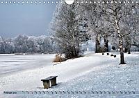 Der Augsburger Stadtwald - Ein Paradies für Naturfreunde (Wandkalender 2019 DIN A4 quer) - Produktdetailbild 2