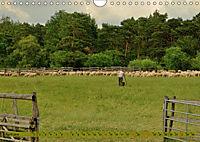 Der Augsburger Stadtwald - Ein Paradies für Naturfreunde (Wandkalender 2019 DIN A4 quer) - Produktdetailbild 4