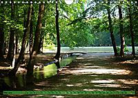 Der Augsburger Stadtwald - Ein Paradies für Naturfreunde (Wandkalender 2019 DIN A4 quer) - Produktdetailbild 5