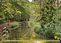 Der Augsburger Stadtwald - Ein Paradies für Naturfreunde (Wandkalender 2019 DIN A4 quer) - Produktdetailbild 8