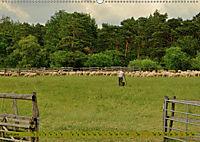 Der Augsburger Stadtwald - Ein Paradies für Naturfreunde (Wandkalender 2019 DIN A2 quer) - Produktdetailbild 4