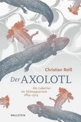 Der Axolotl, Christian Reiß