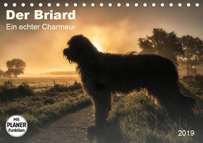 Der Briard 2019 - Ein echter Charmeur (Tischkalender 2019 DIN A5 quer), Sonja Tessen