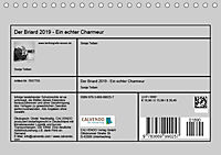 Der Briard 2019 - Ein echter Charmeur (Tischkalender 2019 DIN A5 quer) - Produktdetailbild 13