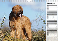 Der Briard 2019 - Ein echter Charmeur (Wandkalender 2019 DIN A4 quer) - Produktdetailbild 2