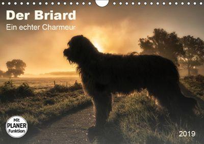 Der Briard 2019 - Ein echter Charmeur (Wandkalender 2019 DIN A4 quer), Sonja Tessen