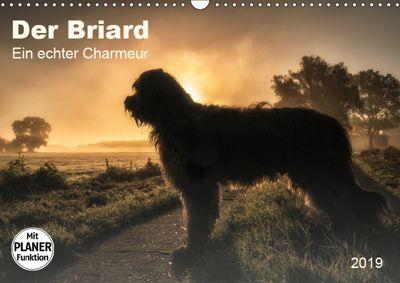Der Briard 2019 - Ein echter Charmeur (Wandkalender 2019 DIN A3 quer), Sonja Teßen