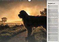 Der Briard 2019 - Ein echter Charmeur (Wandkalender 2019 DIN A3 quer) - Produktdetailbild 8