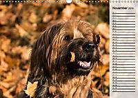 Der Briard 2019 - Ein echter Charmeur (Wandkalender 2019 DIN A3 quer) - Produktdetailbild 11