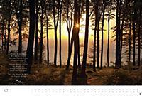 Der deutsche Wald - Ein literarischer Spaziergang Edition 2018 - Produktdetailbild 7