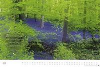 Der deutsche Wald - Ein literarischer Spaziergang Edition 2018 - Produktdetailbild 3