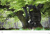 Der deutsche Wald - Ein literarischer Spaziergang Edition 2018 - Produktdetailbild 4