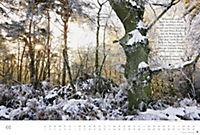 Der deutsche Wald - Ein literarischer Spaziergang Edition 2018 - Produktdetailbild 1