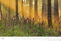 Der deutsche Wald - Ein literarischer Spaziergang Edition 2018 - Produktdetailbild 5