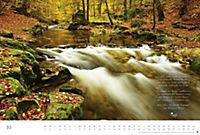 Der deutsche Wald - Ein literarischer Spaziergang Edition 2018 - Produktdetailbild 10