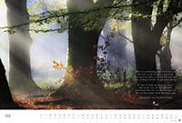 Der deutsche Wald - Ein literarischer Spaziergang Edition 2018 - Produktdetailbild 9