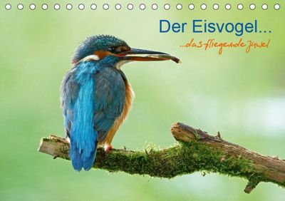 Der Eisvogel...fliegendes Juwel (Tischkalender 2019 DIN A5 quer), Mirko Fuchs