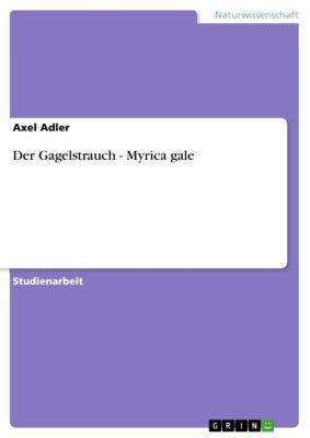Der Gagelstrauch - Myrica gale, Axel Adler