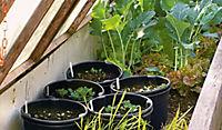 Der Gartenflüsterer - Produktdetailbild 2