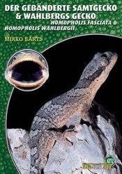 Der Gebänderte Samtgecko & Wahlbergs Gecko, Mirko Barts