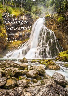 Der Gollinger Wasserfall (Wandkalender 2019 DIN A2 hoch), Thomas Reicher