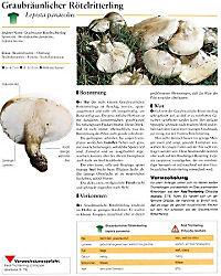 Der grosse Pilzatlas - Produktdetailbild 5